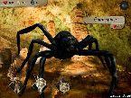 Luttant contre une grande araignee et autres monstres mythologiques